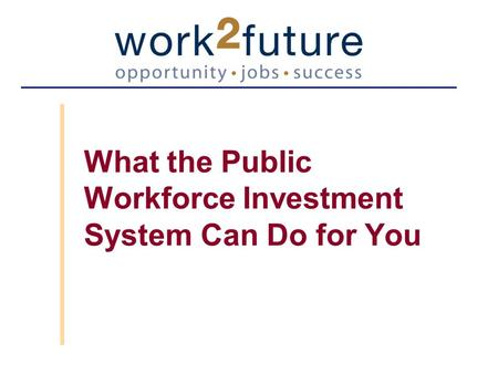 What the Public Workforce Investment System Can Do for You.
