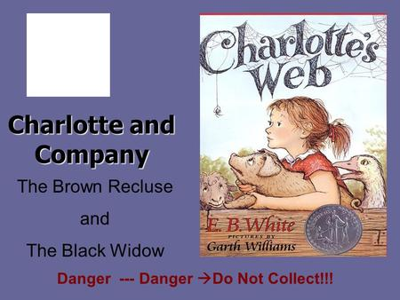 Charlotte and Company The Brown Recluse and The Black Widow Danger --- Danger  Do Not Collect!!!