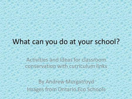What can you do at your school? Activities and Ideas for classroom conservation with curriculum links By Andrew Murgatroyd Images from Ontario Eco Schools.