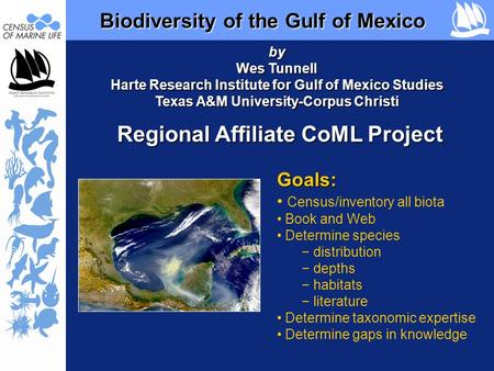 Biodiversity of the Gulf of Mexico Biodiversity of the Gulf of Mexico Regional Affiliate CoML Project Goals: Census/inventory all biota Book and Web Determine.