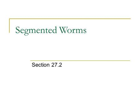Segmented Worms Section 27.2.