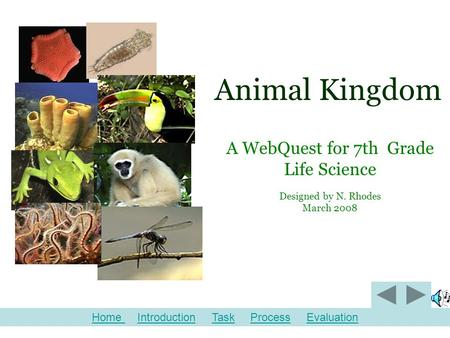 Animal Kingdom A WebQuest for 7th Grade Life Science Designed by N. Rhodes March 2008 Home Home Introduction Task Process EvaluationIntroductionTaskProcessEvaluation.