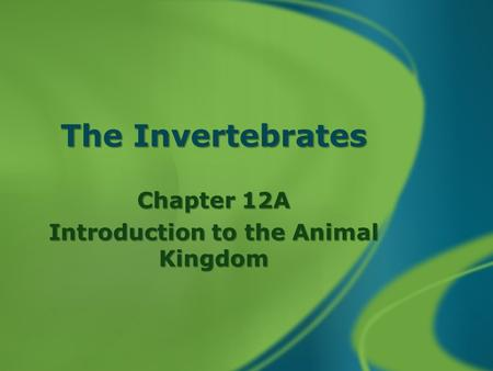 The Invertebrates Chapter 12A Introduction to the Animal Kingdom.