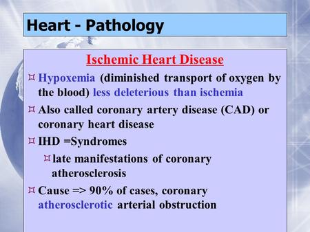 Heart - Pathology Ischemic Heart Disease  Hypoxemia (diminished transport of oxygen by the blood) less deleterious than ischemia  Also called coronary.