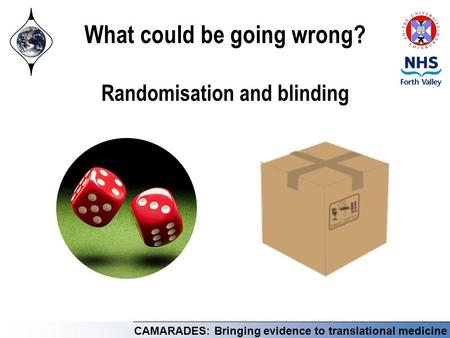 CAMARADES: Bringing evidence to translational medicine What could be going wrong? Randomisation and blinding.