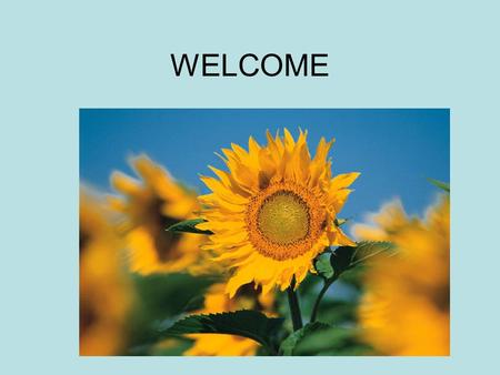 WELCOME. Stress Free and Easy.. Roseann Slaght Family to Family Health Information and Education the ARC of IL. Licensed massage therapist.