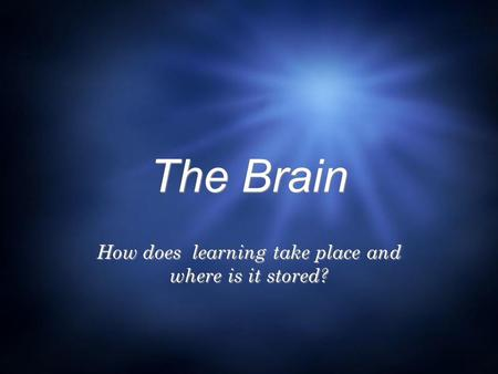 The Brain How does learning take place and where is it stored?