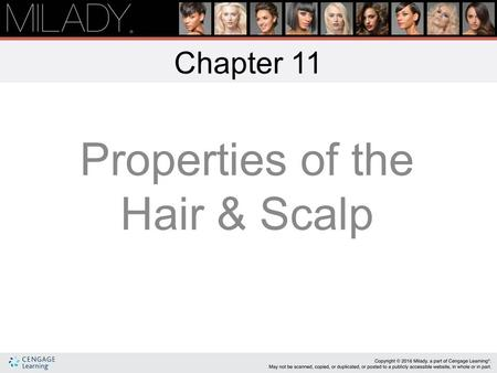 Properties of the Hair & Scalp