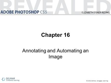 © 2011 Delmar, Cengage Learning Chapter 16 Annotating and Automating an Image.