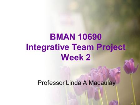 BMAN 10690 Integrative Team Project Week 2 Professor Linda A Macaulay.