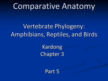 Comparative Anatomy Vertebrate Phylogeny: Amphibians, Reptiles, and Birds Kardong Chapter 3 Part 5.