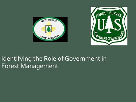 Identifying the Role of Government in Forest Management.