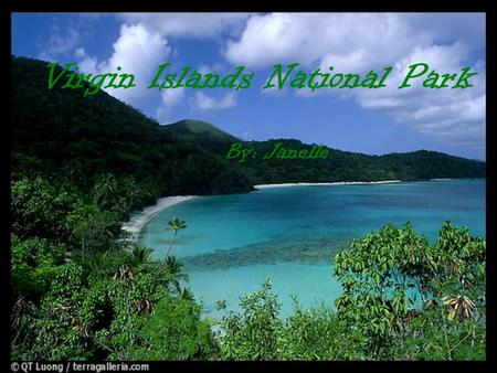 Virgin Islands National Park By: Janelle. Park Facts  The Virgin Islands is in a Beautiful part of the Caribbean Sea  The weather is great!  In the.