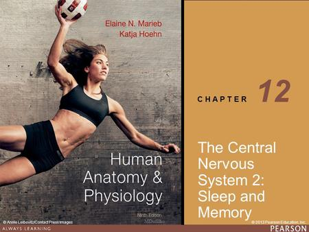 Human Anatomy & Physiology Ninth Edition C H A P T E R © 2013 Pearson Education, Inc.© Annie Leibovitz/Contact Press Images The Central Nervous System.