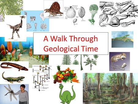 A Walk Through Geological Time. Directions: 1. Complete your time table by visiting each of the 8 stations. 2.You will have 3 minutes at each station.