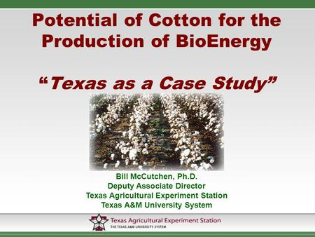"Potential of Cotton for the Production of BioEnergy ""Texas as a Case Study"" Bill McCutchen, Ph.D. Deputy Associate Director Texas Agricultural Experiment."