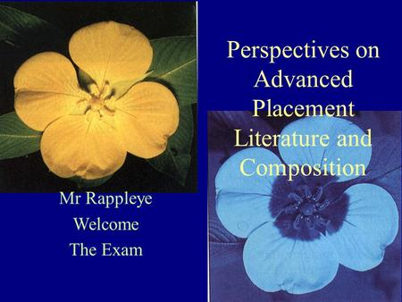 Mr Rappleye Welcome The Exam Perspectives on Advanced Placement Literature and Composition.