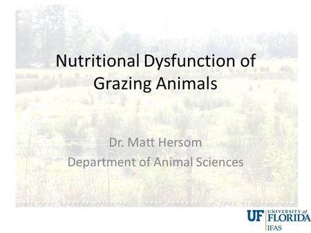 Nutritional Dysfunction of Grazing Animals Dr. Matt Hersom Department of Animal Sciences.