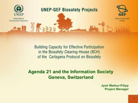 1 Agenda 21 and the Information Society Geneva, Switzerland Jyoti Mathur-Filipp Project Manager.
