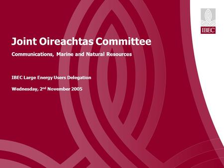 Joint Oireachtas Committee Communications, Marine and Natural Resources IBEC Large Energy Users Delegation Wednesday, 2 nd November 2005.
