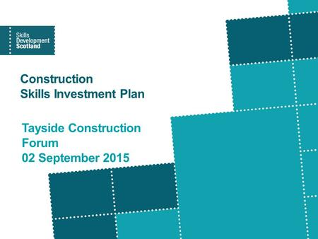 Construction Skills Investment Plan Tayside Construction Forum 02 September 2015.