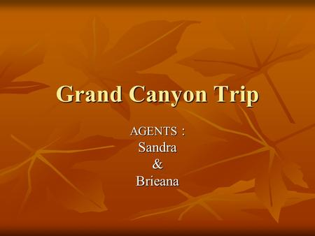 Grand Canyon Trip AGENTS : Sandra&Brieana. A Map of the North Rim.