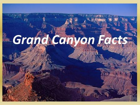 Grand Canyon Facts. Length of the Grand Canyon The Grand Canyon is 277 miles long; 443 kilometers.