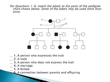 For Questions 1-6, match the labels to the parts of the pedigree chart shown below. Some of the labels may be used more than once. 1. A person who expresses.
