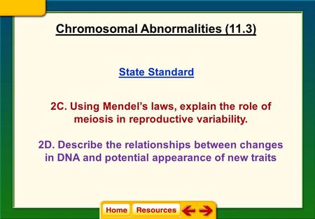 Chromosomal Abnormalities (11.3)