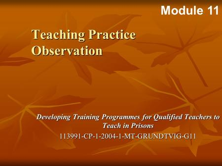 Developing Training Programmes for Qualified Teachers to Teach in Prisons 113991-CP-1-2004-1-MT-GRUNDTVIG-G11 Teaching Practice Observation Module 11.
