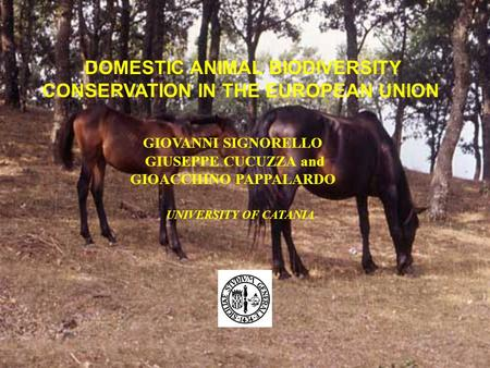 DOMESTIC ANIMAL BIODIVERSITY CONSERVATION IN THE EUROPEAN UNION GIOVANNI SIGNORELLO GIUSEPPE CUCUZZA and GIOACCHINO PAPPALARDO UNIVERSITY OF CATANIA.