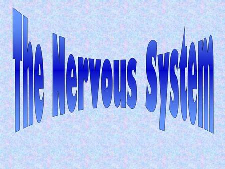 A system that controls all of the activities of the body. The nervous system is made of: The brainThe spinal cord The nervesThe senses.