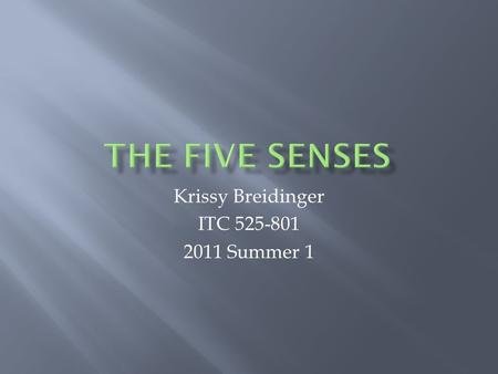 Krissy Breidinger ITC 525-801 2011 Summer 1 MENU Sight Hearing Touch Taste Smell Test Yourself.