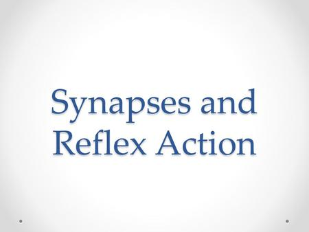 "Synapses and Reflex Action. Synapse Neurons are not continuous Synapse is ""The junction across which a nerve impulse passes from an axon terminal to a."