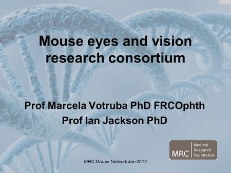 MRC Mouse Network Jan 2012 Mouse eyes and vision research consortium Prof Marcela Votruba PhD FRCOphth Prof Ian Jackson PhD.