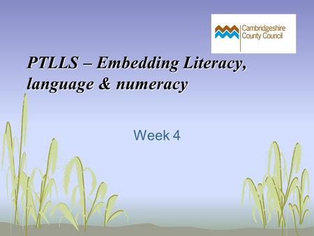 PTLLS – Embedding Literacy, language & numeracy Week 4.
