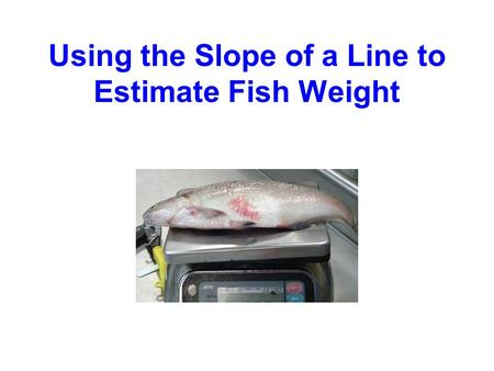 Using the Slope of a Line to Estimate Fish Weight.