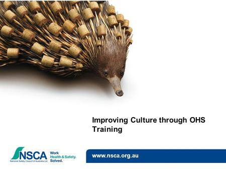 Improving Culture through OHS Training www.nsca.org.au.