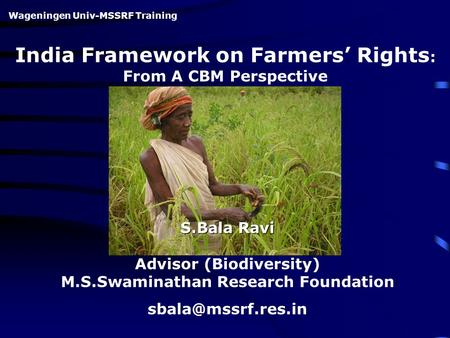 India Framework on Farmers' Rights : From A CBM Perspective S.Bala Ravi Advisor (Biodiversity) M.S.Swaminathan Research Foundation Wageningen.