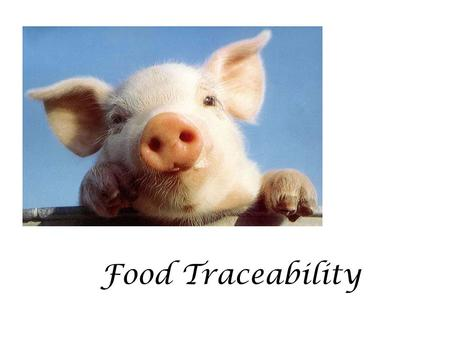 Food Traceability. WHAT IS TRACEABILITY? The traceability is the ability to trace and follow the path of any kind of food from the processing up to the.
