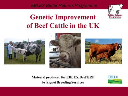 EBLEX Better Returns Programme Material produced for EBLEX Beef BRP by Signet Breeding Services Genetic Improvement of Beef Cattle in the UK.