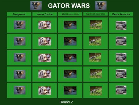 DangerousInsane Choice Might Lose a Limb Near Death Experience Death Sentence GATOR WARS Round 2.