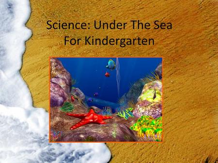 Science: Under The Sea For Kindergarten. What I Hope My Students Learn:  To become more knowledgeable with life under the sea  To be able to recognize.