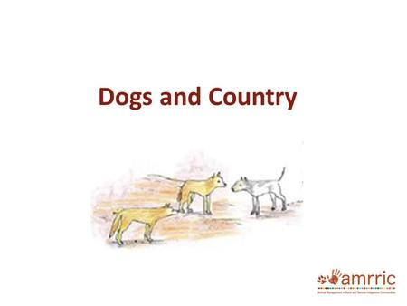 Dogs and Country. The health of the place we live in has a big impact on our health. Dogs can help us live well on country but they can also dirty water,