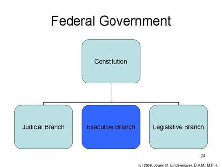 THE THREE BRANCHES OF GOVERNMENT * Legislative * Executive * Judicial Watch Video People Trying to Name Three Branches.