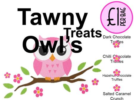 Tawny Owl's Treats Dark Chocolate Truffles Chilli Chocolate Truffles Hazelnut Chocolate Truffles Salted Caramel Crunch Fudge.