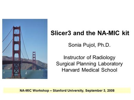 NA-MIC National Alliance for Medical Image Computing  Slicer3 and the NA-MIC kit Sonia Pujol, Ph.D. Instructor of Radiology Surgical Planning.