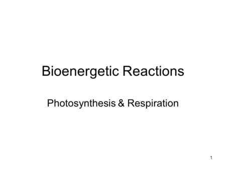 Bioenergetic Reactions