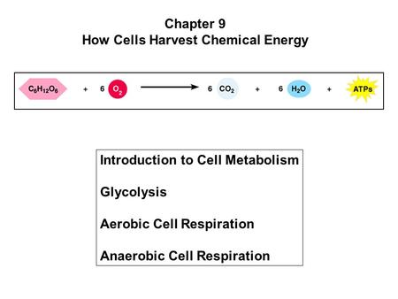 Chapter 9 How Cells Harvest Chemical Energy Introduction to Cell Metabolism Glycolysis Aerobic Cell Respiration Anaerobic Cell Respiration.