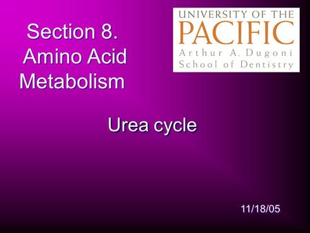 Section 8. Amino Acid Metabolism Urea cycle 11/18/05.